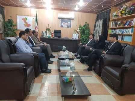 انتصاب مهندس فاطمه احمدی به ریاست اداره دامپزشکی شهرستان مهران