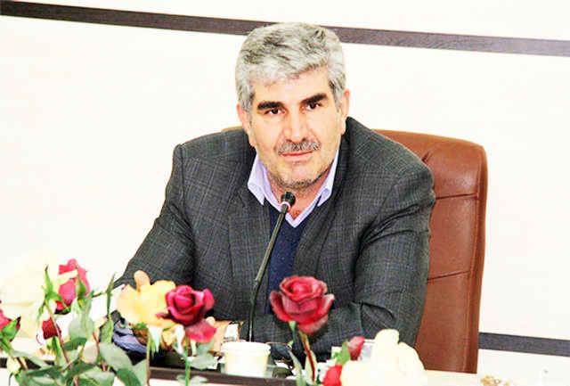 رئیس دانشگاه ایلام/جشنواره  رضوی حرکتی آیینی در تکریم اهل بیت است