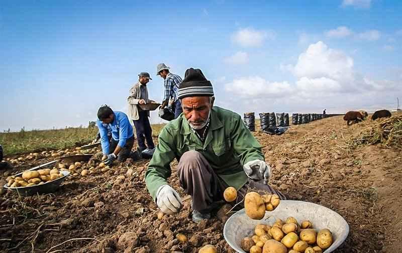 ۱۵۰ میلیارد ریال تسهیلات اشتغالزایی به روستائیان آبدانان پرداخت شد