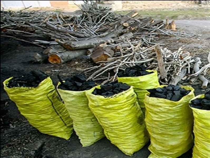 2 هزار کیلوگرم ذغال از متخلفان در ایلام کشف شد