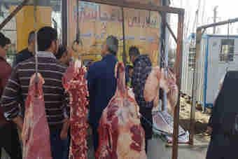 کشتار غیرمجاز دام در ایلام بر افزایش قیمت دامن زده است
