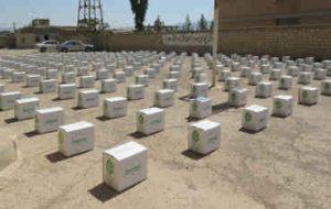۲۵۰ بسته غذایی به مادران باردار هلیلانی اهدا شد